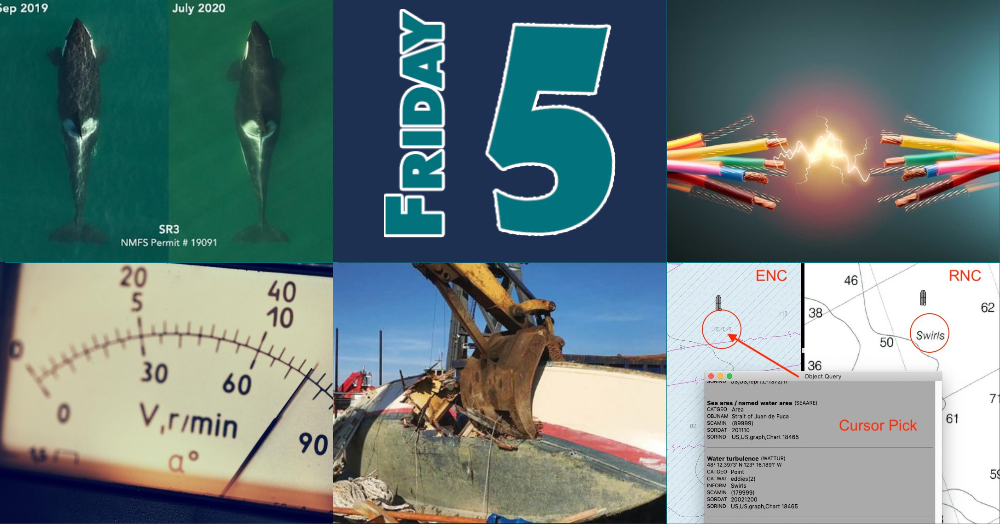 Friday Five for July 31